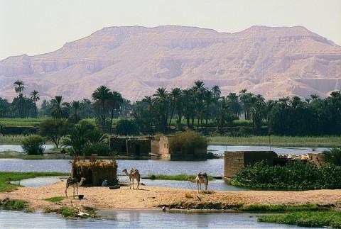 egypt_peopleoftheland27b.jpg