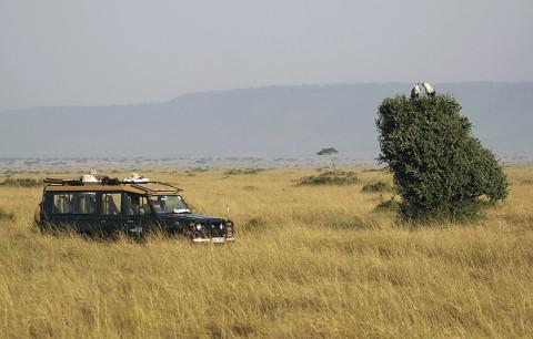 Kenya-landscape-023.jpg