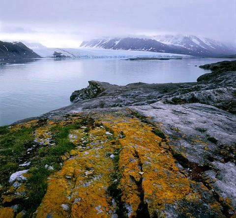 landscape48.jpg