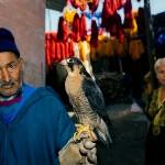 morocco_peopleoftheland21b.jpg