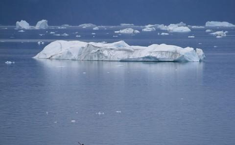 polareskimo2.jpg