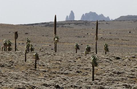 Ethiopia-Landscape