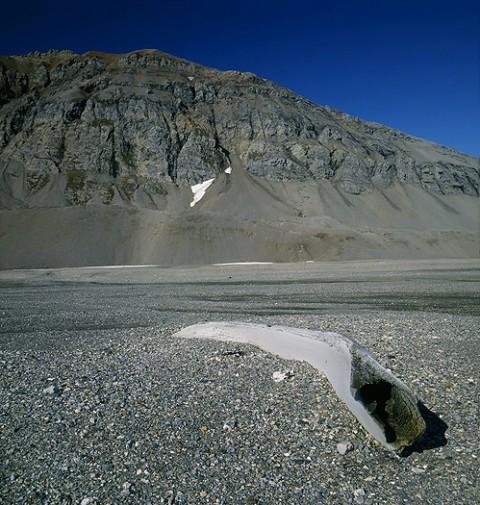landscape31.jpg