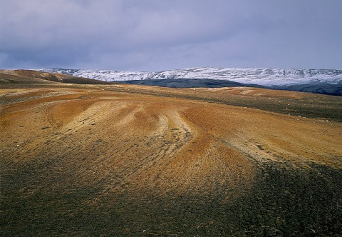 landscape33.jpg