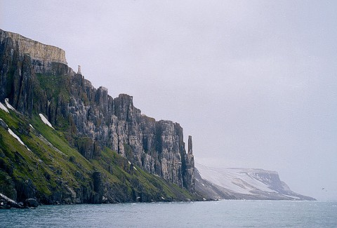 landscape50.jpg