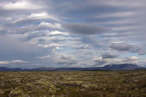 landscape89.jpg