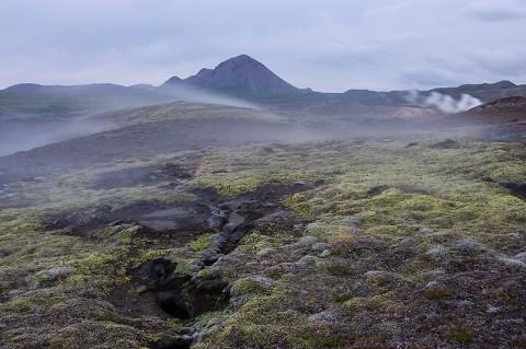 landscape91.jpg