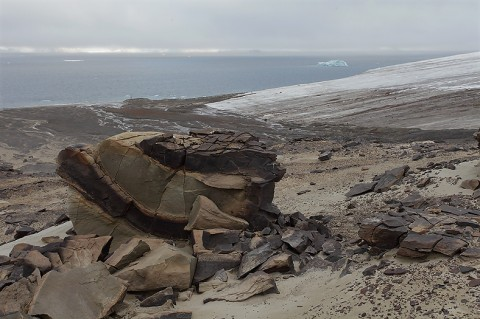 Champ Island on Franz Josef Land, Russia